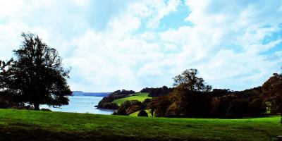 View from Trelissick